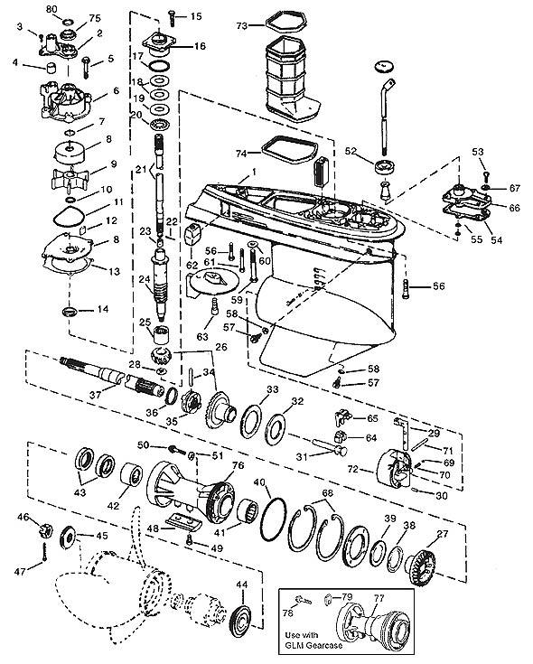 v4  v6 o type  1979-2006